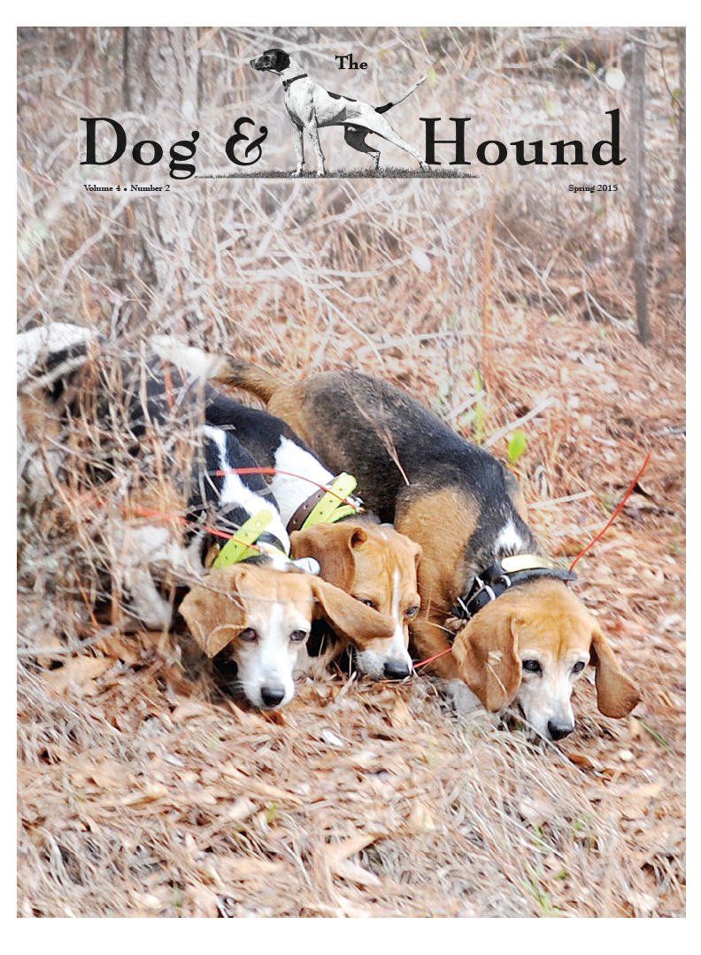Dog and Hound Spring 2015